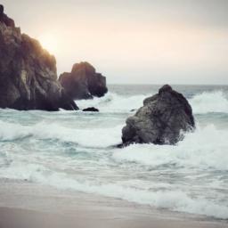 sea-nature-sunny-beach-e1454660374364-256x256 Los Angeles Magician & Mentalist from Magic Castle
